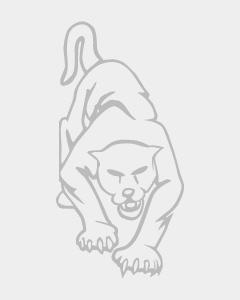 PRS Wall Mount Guardrail