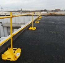 Raptor Weighted Bases Guardrail